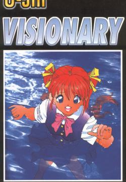 Visionary 13